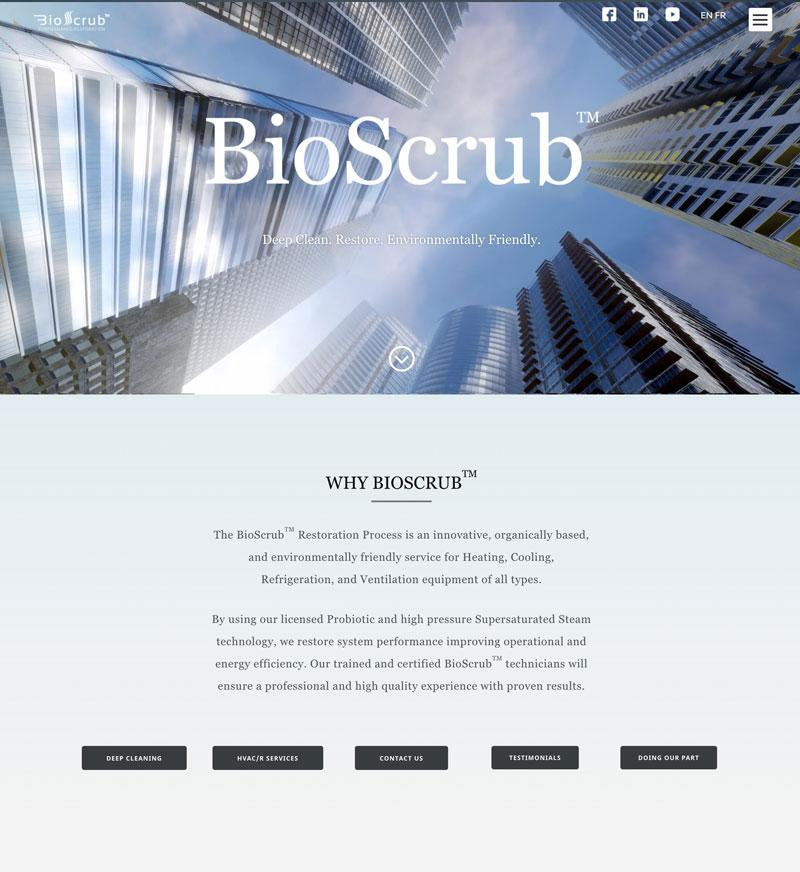 Bio Scrub website design